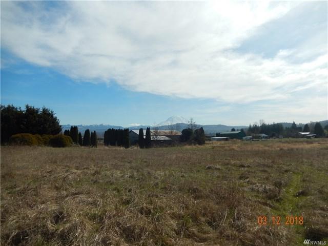 Land W A Mount Rainier View Heilbrun Home Team
